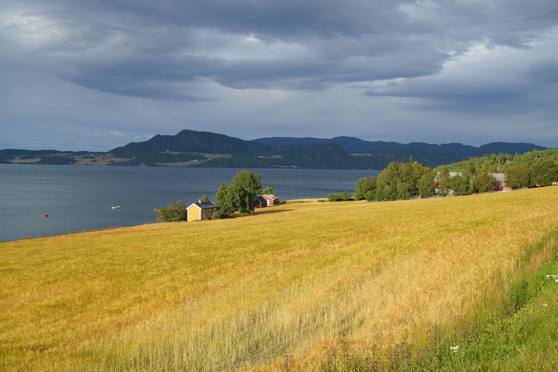 Alles etwas später: Acker bei Trondheim