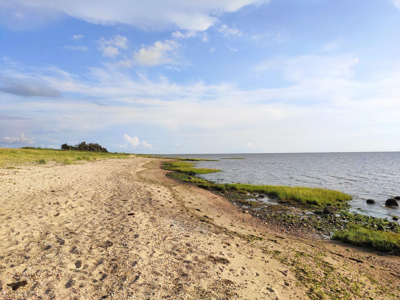 Unberührte Küste in Dänemark