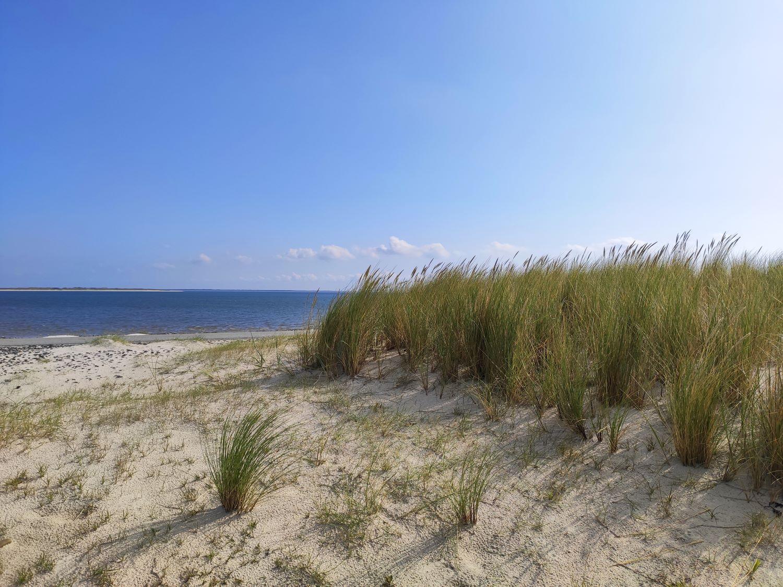 Nordsee von der Düne